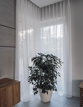 Białe firany w oknie narożnikowym i zielona roślina w doniczce